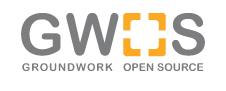 GWOS_logo